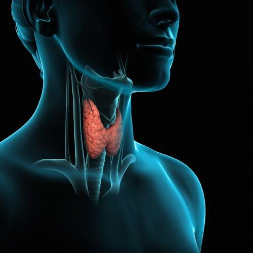 Χειρουργική ενδοκρινών αδένων